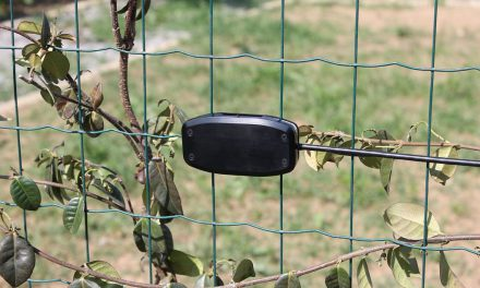 GAPID la nuova protezione per le recinzioni